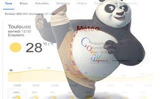 Panda a menacé la météo des SERPs le 13 decembre