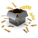 nouvelles extensions de domaine