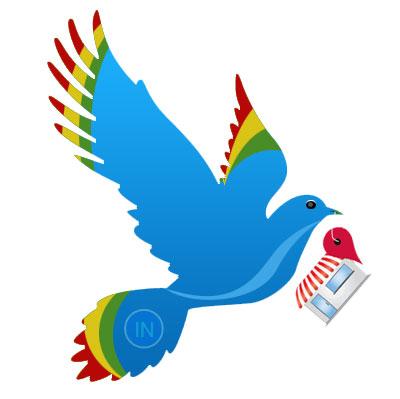 google-pigeon2