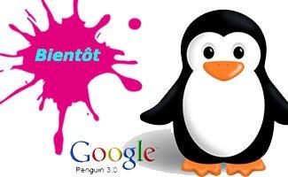 Le lancement de Google Penguin 3.0 pour très bientôt ?