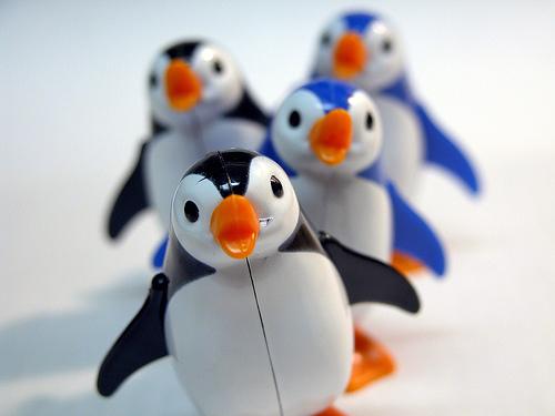 penguin_